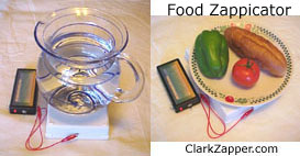 food zappicator