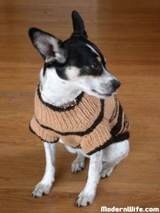 Cosmo's Wool Sweater